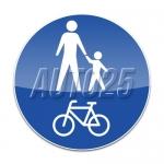 Pista comuna pentru pietoni si biciclete
